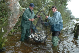 Angling Reports - 01 October 2008