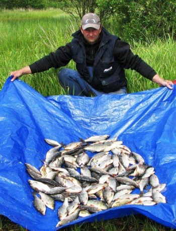 Angling Reports - 10 June 2011