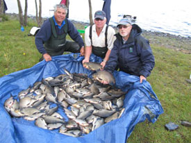 Angling Reports - 15 September 2010