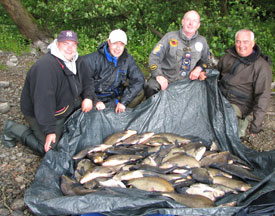 Angling Reports - 16 July 2008
