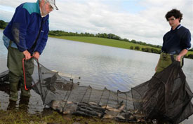 Angling Reports - 25 August 2010
