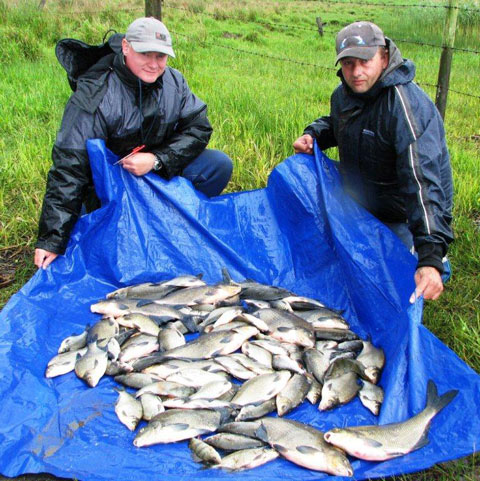 Angling Reports - 08 June 2011